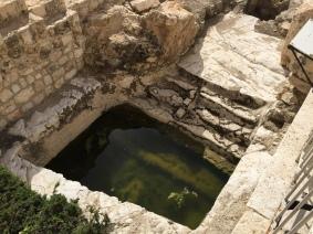 Mikveh 3